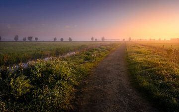 Boterhuispolder in de Mist sur Martijn van der Nat