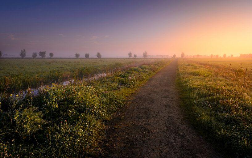 Boterhuispolder in de Mist van Martijn van der Nat