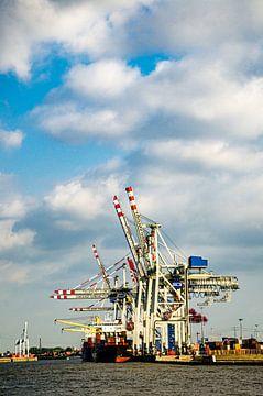 Containerterminal im Hafen Hamburg von Dieter Walther