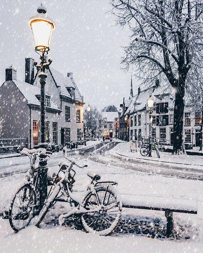 Winter Magic  van