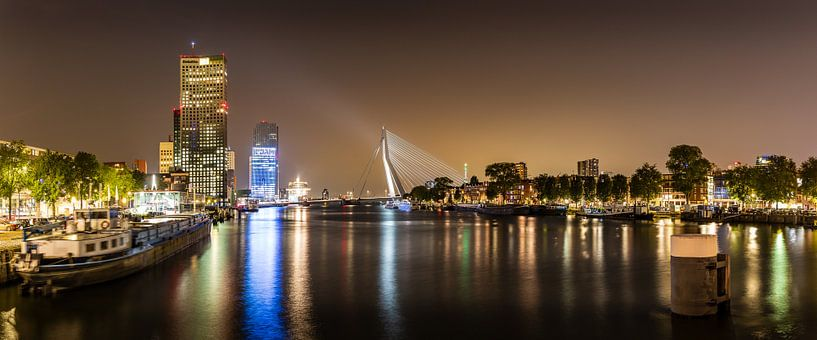 Rotterdam panorama in de avond van Pieter van Dieren (pidi.photo)