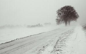 Sneeuwstorm van Martijn Tilroe