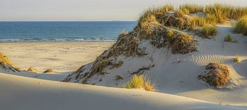 Terschelling Strand und Dünen von Dirk van Egmond