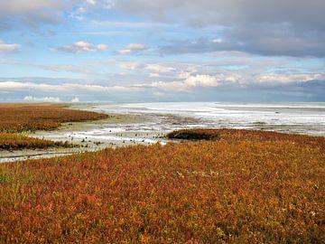 Herfst op de Waddenzee van Jan Huneman