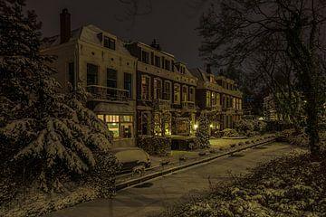 Winters plaatje in Kralingen van Leon Okkenburg
