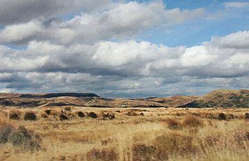 """Landschap - Nieuw Zeeland - """"On the Road"""" - Roadtrip - Schilderij"""