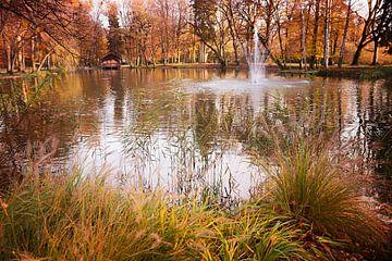 Vijver in de herfst van Susanne Bauernfeind