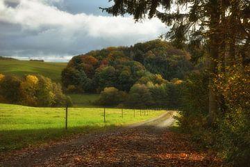 Weg in den Herbstwald von Dieter Beselt