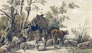 Cornelis Ploos van Amstel, Schafhirte im Stall