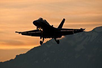 Landing by dawm von Nico van Remmerden