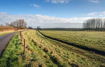Niederländische Polderlandschaft an einem sonnigen Wintertag von Ruud Morijn
