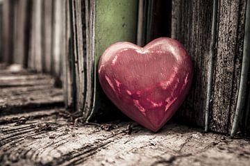 Lesen ist Liebe / Liebe ist lesen von Norbert Sülzner