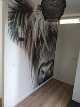 Klantfoto: Portret Schotse Hooglander zwart-wit van Sandra van Kampen, als behang