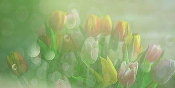 Bubbles tulpen van Ellinor Creation