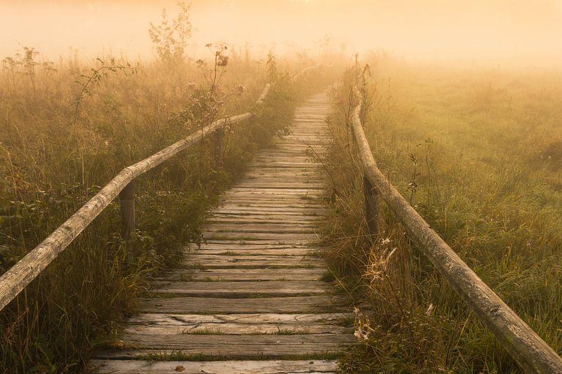 Der Nebel Pfad zum Sonnenaufgang von Jiri Viehmann