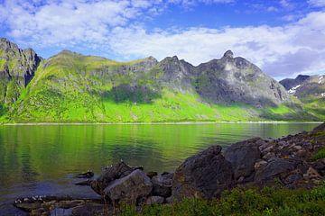 Panoramablick auf der Insel Senja von Gisela Scheffbuch
