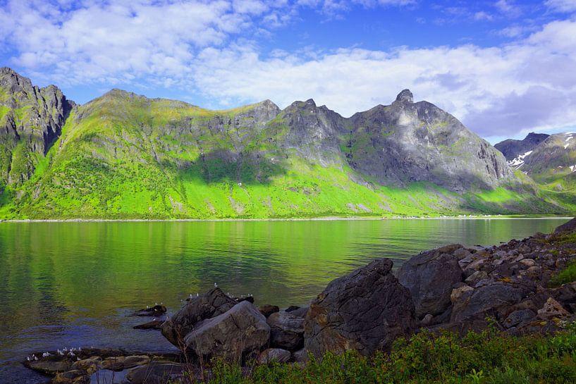 Panoramisch uitzicht op het eiland Senja van Gisela Scheffbuch