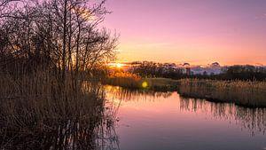 Zonsondergang in park Cronesteyn