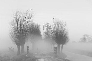 Landweg in de mist. van Ton de Koning