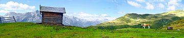 Alm in Tirol von Leopold Brix