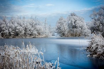 Winters wit  van AnyTiff (Tiffany Peters)
