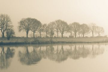 La Meuse est enveloppée de brouillard au lever du soleil. sur Margot Hartgers
