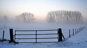 Het hek.