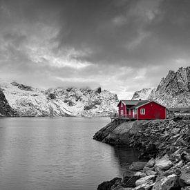 Maison en bois rouge sur les Lofoten sur Tilo Grellmann | Photography