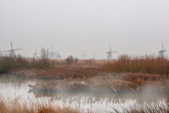 Mist aan de kinderdijk met de windmolens. van Brian Morgan