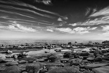 Juraküste von Johanna Blankenstein