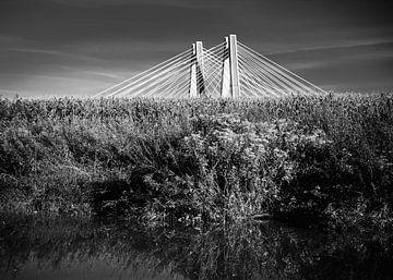 Brücke auf der Weichsel Krakau Schwarzweißfotografie van JBJart Justyna Jaszke