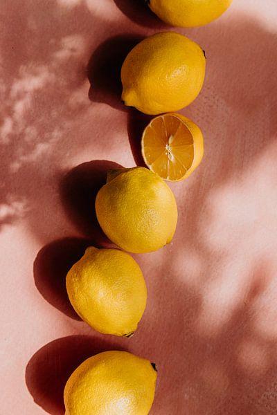 Sommerszene, gelbe Zitronen auf rosa Hintergrund von Yvette Baur
