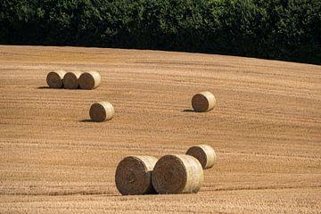 Gefreesd korenveld met grote ronde hooibalen in groepen van Harry Adam