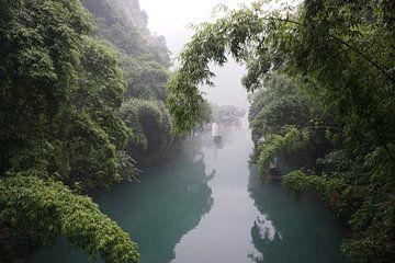 Varend door het bamboebos van Jildau Schotanus
