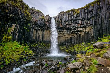 Svartifoss, IJsland sur Frank Laurens