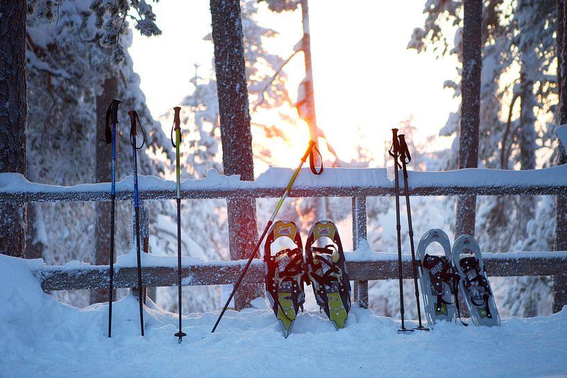 Sneeuwschoenen van Menno Boermans