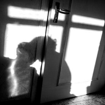 L'ombre d'un amour van Alain Ulmer