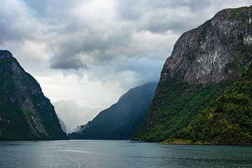 Blick auf den Aurlandsfjord in Norwegen von Rico Ködder