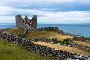 Kasteel in Ierland van Fred Lenting