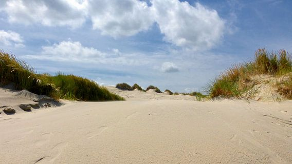 Voetstappen in het zand in de duinen van Terschelling
