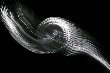 Abstrakte Kunst--Flamme-01-SCHWARZ-WEIß von Katja Goede