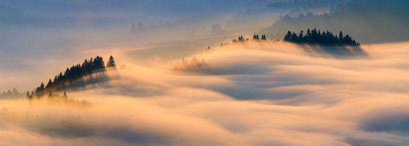 Pieniny misty sunrise van Wojciech Kruczynski