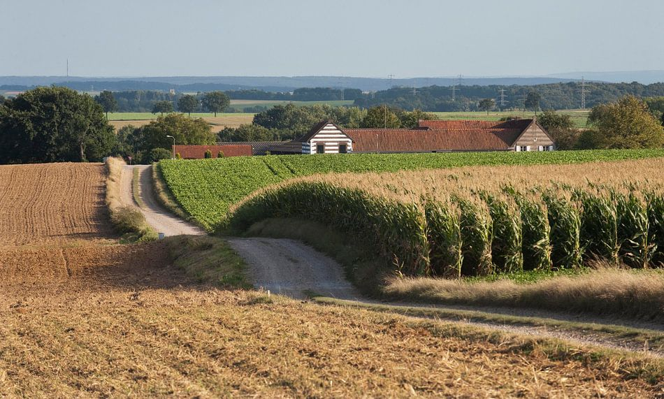 Limburgse heuvels van Wim van der Ende
