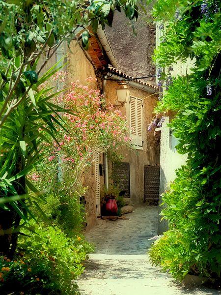 La Douce France ( Frankrijk ) van Anouschka Hendriks