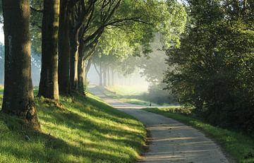 Landweggetje van Landelijke foto's uit Brabant