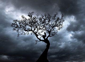 Vrouwfiguur in boom tegen een sprookjesachtige achtergrond. van Bianca ter Riet