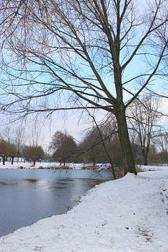 Winter wonderland 5 van Carin Klabbers