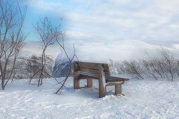 Winter in Noorwegen van Iris Heuer