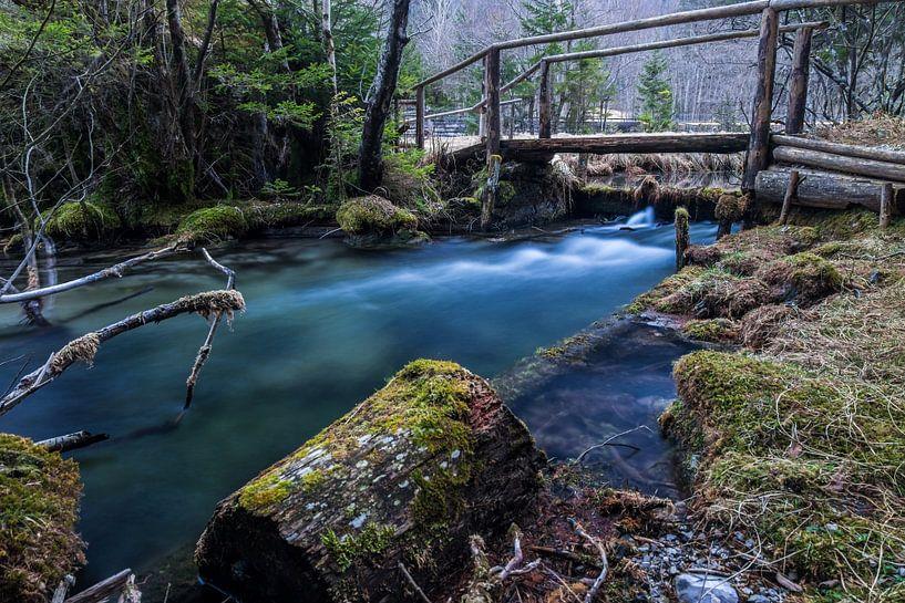 Logarska dolina van Narandžić Dean