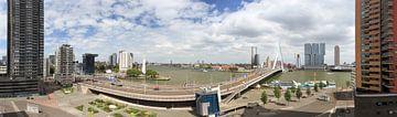 Heel Rotterdam op één foto sur Roy Poots